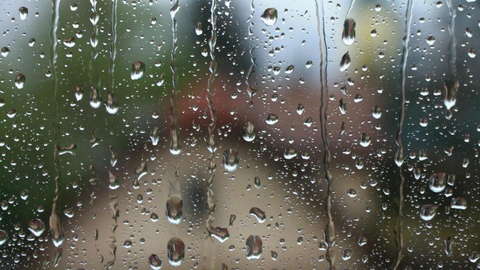 Disfrutando los días lluviosos